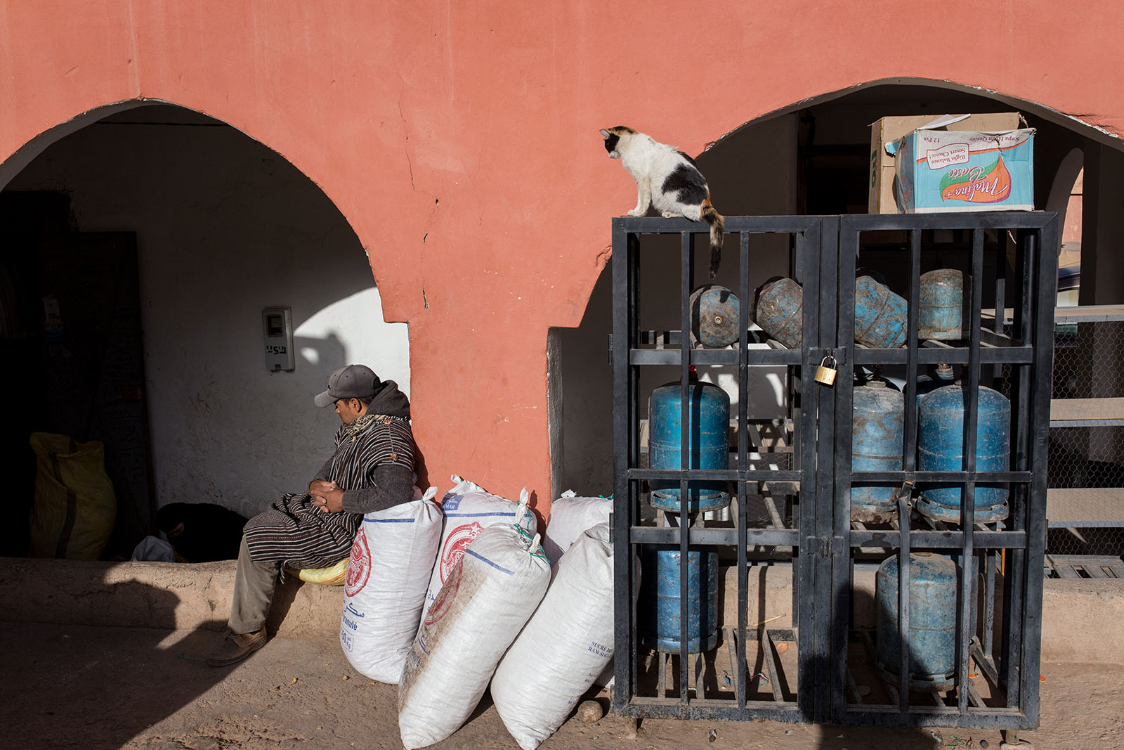 Cat watches over store in Boumalne Dades, Morocco