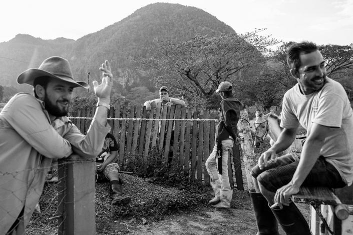 Cuban Cowboys, Viñales