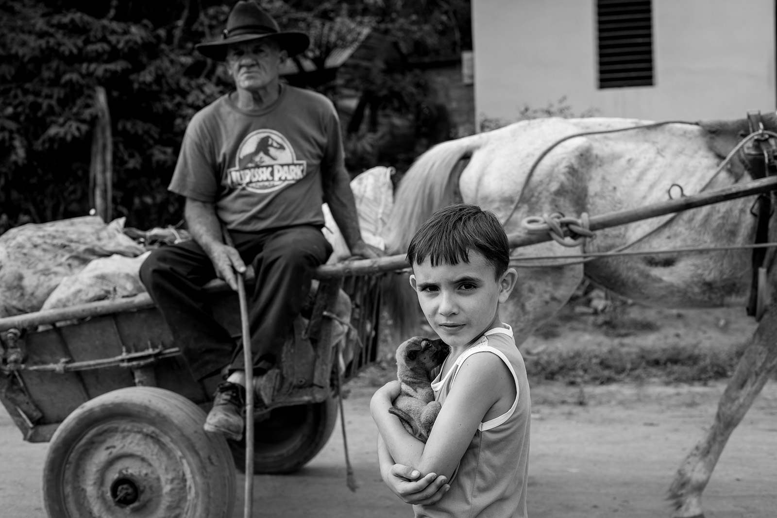 Boy with puppy in Viñales Cuba